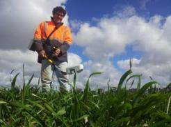 Crop monitoring