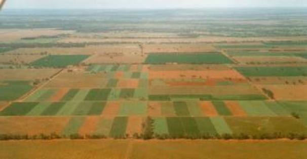 Soil carbon cwfs aog results summary central west for Soil tour dates 2015