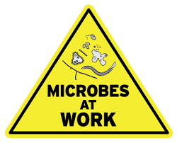 Working_microbes