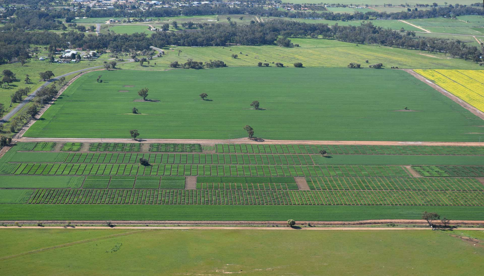 Central West Farming Systems trials